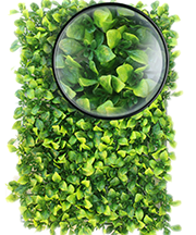 ARTIFICIAL PLANT WALL010.png
