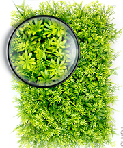 ARTIFICIAL PLANT WALL01.png