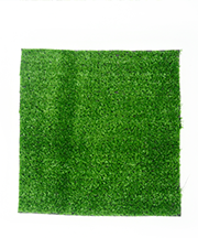 ARTIFICIAL GRASS 001.png