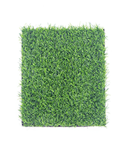 ARTIFICIAL GRASS 006.png