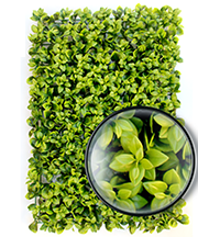 ARTIFICIAL PLANT WALL07.png