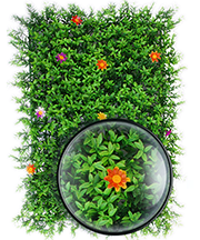 ARTIFICIAL PLANT WALL002.png